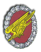 Fallschirmjaeger Ingolstadt